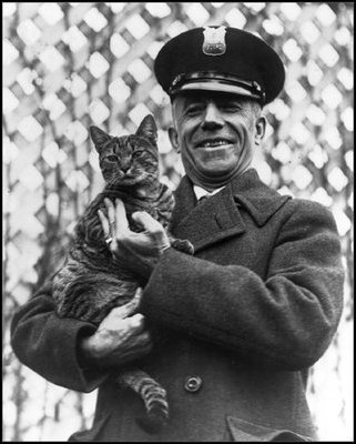 Image result for calvin coolidge & a cat