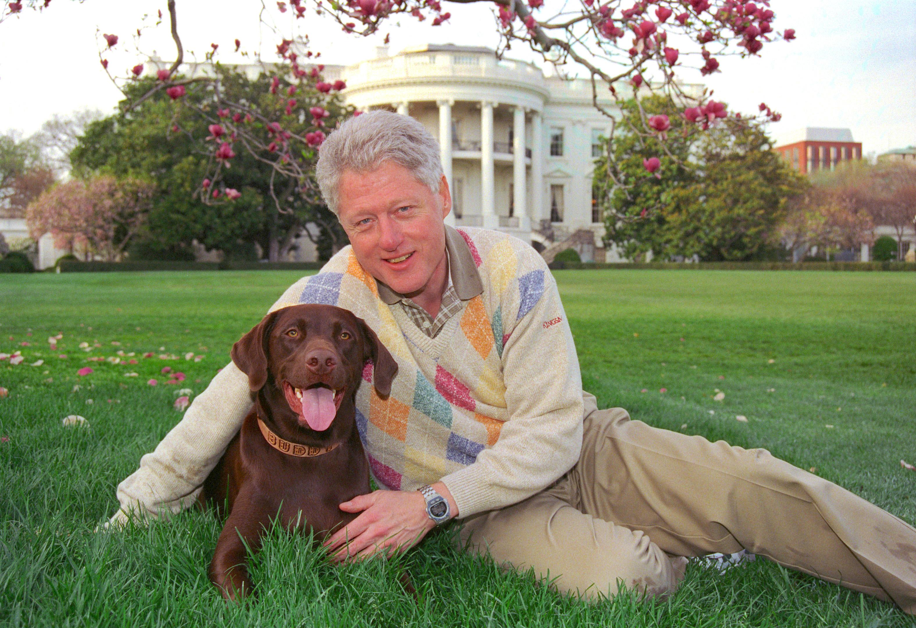 Clinton Washington Dog Friend