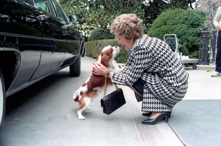 Ronald Reagan S Dog Rex Presidential Pet Museum