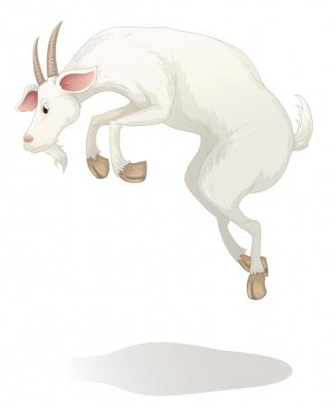 abraham-lincoln-goat-nanny