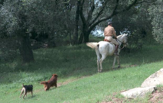 liberty-reagan-ranch