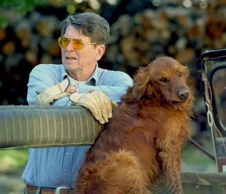 Ronald Reagan S Golden Retriever Victory
