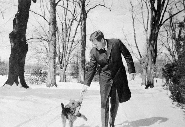 President Kennedy plays with Charlie in the snow, March 1962.