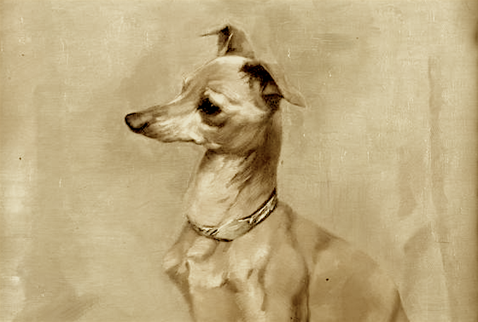 This is not Le Beau, but he probably looked something like this Italian greyhound from the 1800s. Painting by George Pirie.